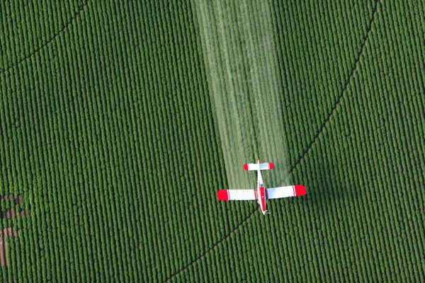 Paraquat sprayed from a plane