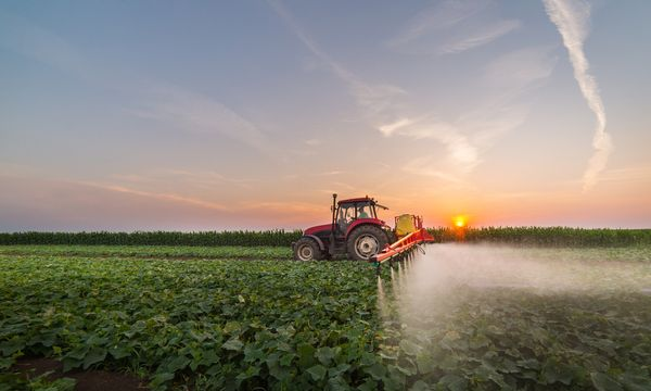 pesticide Paraquat being sprayed on crops